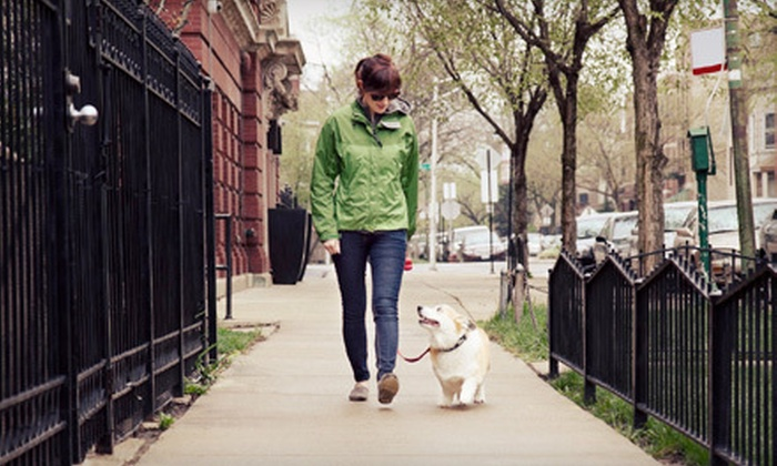AKA-K9 - Langley: One or Two Hours of Private Dog-Obedience Training from AKA-K9 (Up to 62% Off)