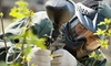 Sherkston Paintball Park & Pro Shop - Crowland: All-Day Paintball Package for Two, Four, or Six with Equipment Rental at Sherkston Paintball (Up to 64% Off)