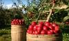 Eckert's Millstadt Farm - Millstadt: $10 for Two Regular Admissions to Eckert's Millstadt Farm (Up to $20 Value)