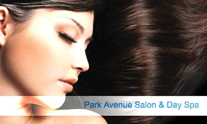 Park Avenue Salon & Day Spa - East Avenue: $30 for $60 of Hair Services at Park Avenue Salon & Day Spa