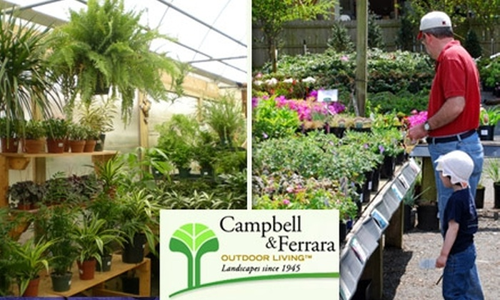 Campbell & Ferrara Outdoor Living - Annandale: $25 for $50 Worth of Plants, Flowers, and Gardening Accessories at Campbell & Ferrara Outdoor Living