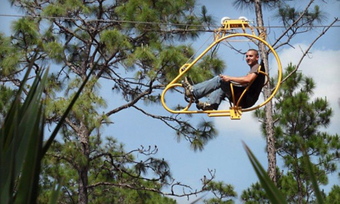 Florida EcoSafaris - South and East Osceola: Coach Safari or Cypress Canopy Cycle Tour for One or Two from Florida EcoSafaris (Up to 57% Off)