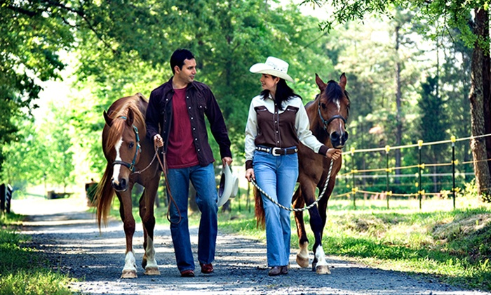 Douglas Lakeview Stables - 7: One Trail Ride for Two or Four at Douglas Lakeview Stables (Up to 52% Off)