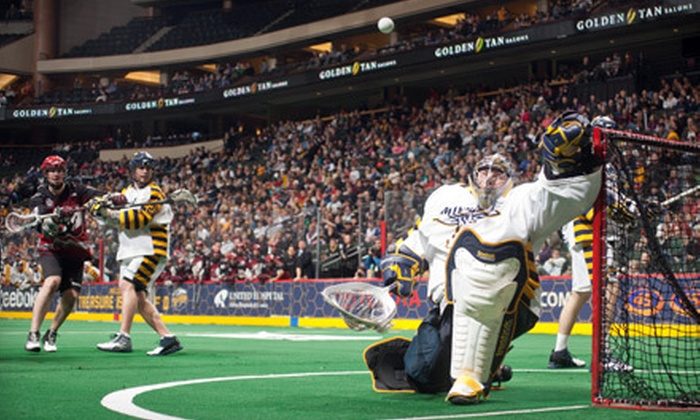 Minnesota Swarm - Northwestern Precinct: $40 for Two Tickets to See the Minnesota Swarm at Xcel Energy Center in St. Paul on February 10, 12, or 18, Plus Two Souvenir Scarves ($128 Value)