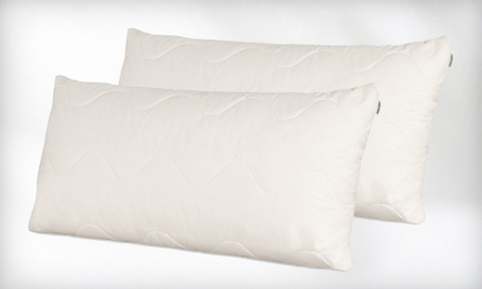 100% Natural Hypoallergenic Pillows: Two Standard- or Queen-Size 100% Natural Hypoallergenic Dream Mate Pillows (Up to 61% Off)