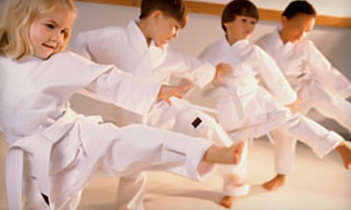 Park's Martial Arts Academy - Multiple Locations: $65 for One Month of Self-Defense Classes and $40 Toward Uniform Purchase at Park's Martial Arts Academy ($165 Value)