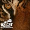 52% Off Tour at Big Cat Rescue