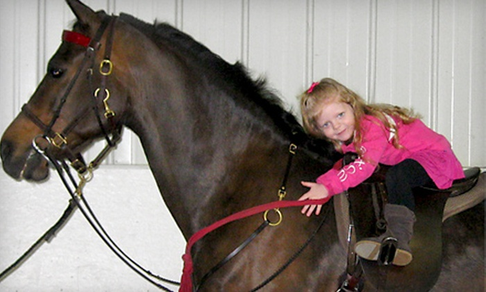 Glendale Stables - Columbia: Two or Five Horseback-Riding or Horse-Driving Lessons at Glendale Stables