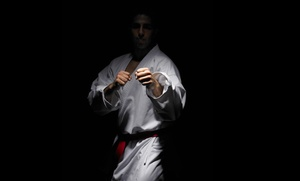 Martial Arts History Museum: Martial Arts History Museum Visit for Two or Four, or One Individual Membership (Up to 62% Off)