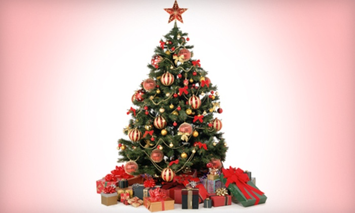 Toby's Trees - Contra Costa Centre: $39 for a Grand Fir or Douglas Fir Christmas Tree Up to 10 Feet Tall at Toby's Trees in Walnut Creek (Up to $80 Value)