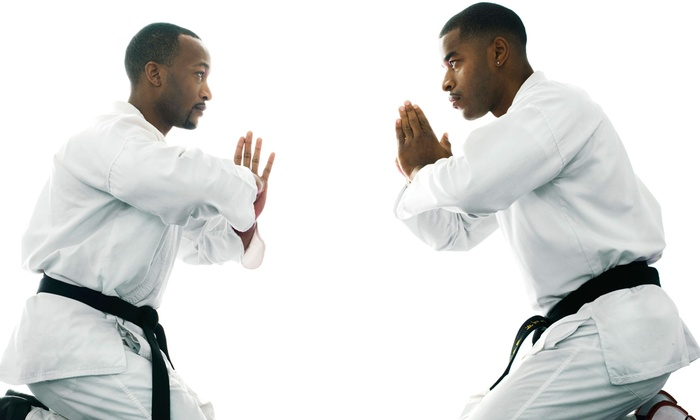 FUSE Martial Arts - Clinton Township: 10 or 20 Drop-In Martial-Arts Classes at FUSE Martial Arts (Up to 88% Off)