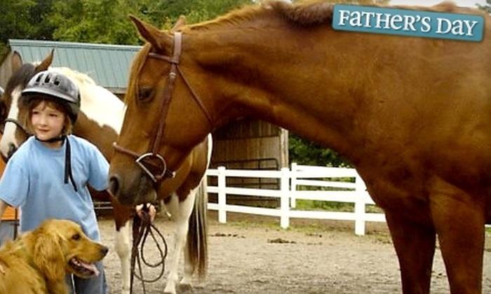Lupine Farm - Vassalboro: $22 for a Private Horseback-Riding Lesson at Lupine Farm in Vassalboro ($45 Value)