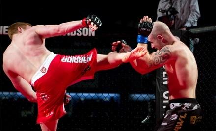 Armageddon Fighting Championship: