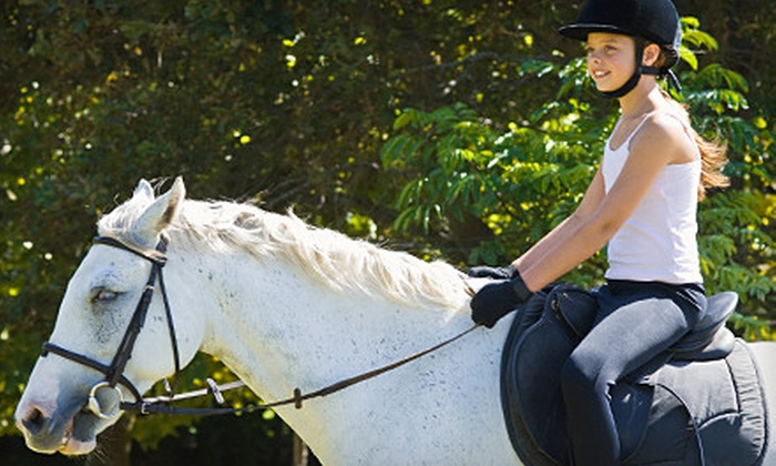 Camp Red Cedar - Perry: One or Eight Horse-Riding Lessons at Camp Red Cedar. (Up to 56% Off). Two Options Available.