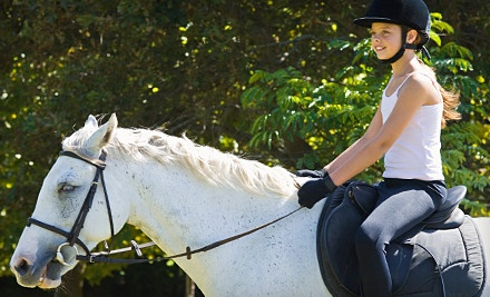 1-Hour Horse-Riding Lesson (a $45 value) - Camp Red Cedar in Fort Wayne