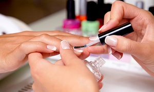 The Salon: One or Two Shellac Manicures or One Mani-Pedi at The Salon (Up to 53% Off)