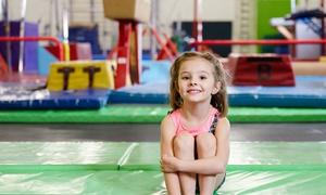 Sagamore Academy of Gymnastics: Four Gymnastics Classes at Sagamore Academy of Gymnastics (61% Off)