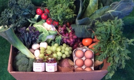 moulton fruit and veg limited
