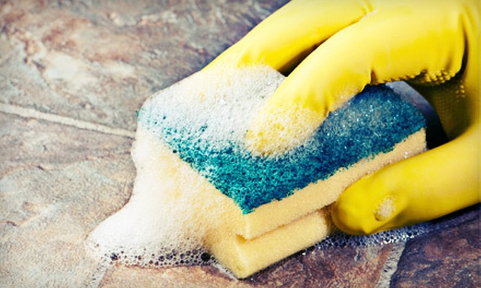 Sparkling' Clean Team - Northwest Tampa: One or Two Housecleaning Sessions for Three Work-Hours from Sparklin' Clean Team (Up to 63% Off)