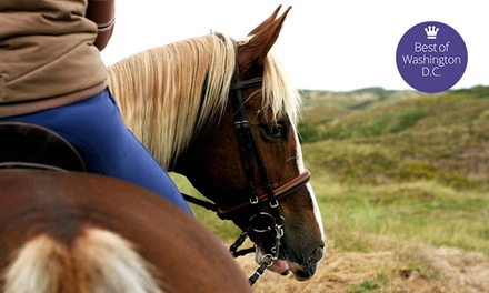 Trail Ride, River Boat Ride, and Wine Tasting (Up to 47% Off). Five Options Available.