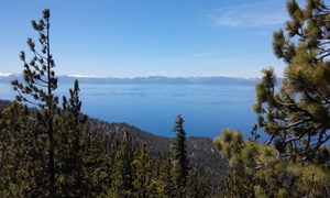 True West Tours: Brewery, Taste of Tahoe, Lost Sierra, or Lake Explorer Tour for One or Two from True West Tours (Up to 52% Off)