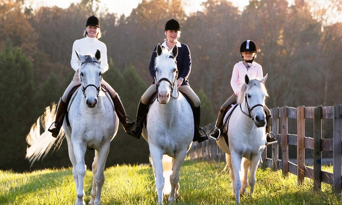 The Graham Equestrian Center - Carney: Horseback-Riding Lessons for One or Two at Graham Equestrian Center (Up to 52% Off)