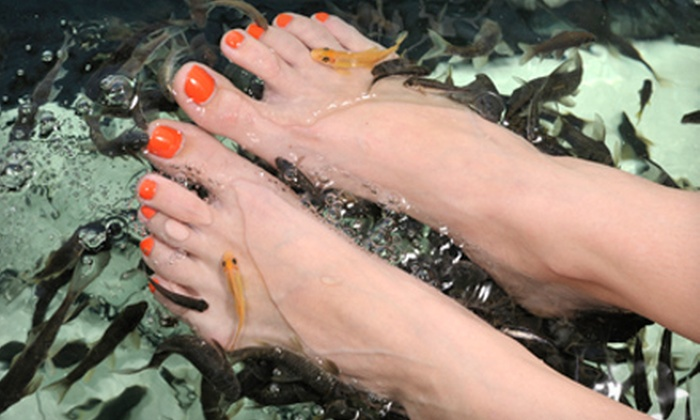52 off shellac mani or pedi in north liberty studio 5 for 33 fingers salon groupon