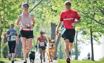 Running Free - Running Free in Ajax