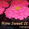 Half Off Gourmet Cupcakes
