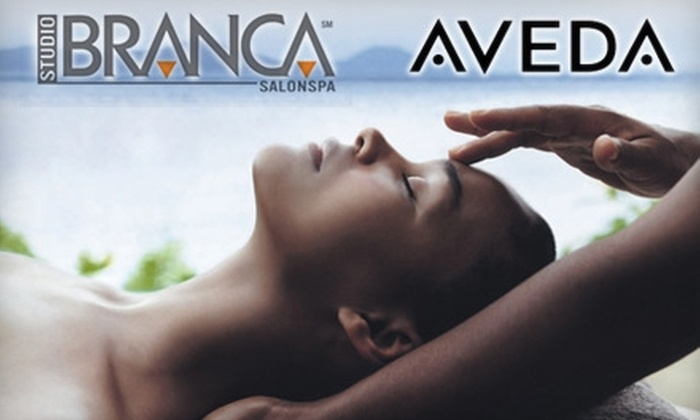 Studio Branca SalonSpa and Salon Branca - Saint Louis: Spa Services at Studio Branca SalonSpa and Salon Branca. Choose from Three Options.