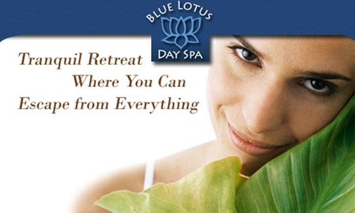Blue Lotus Day Spa - Virginia Park: $35 for Blue Lotus Day Spa's Hour-Long Signature Facial