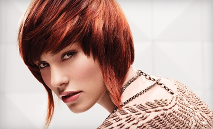 1 Cut-And-Style Package (up to a $55 value) - Hair Impressions in Tuscaloosa
