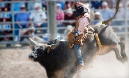 The San Antonio Stock Show & Rodeo from Thurs., Feb. 9 through Sun., Feb. 26 at 8AM: General Admission - The San Antonio Stock Show & Rodeo in San Antonio