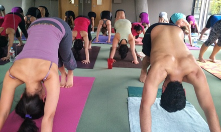 $29 for One Month of Unlimited Hot Yoga Plus Three Guest Passes at The Yoga Element ($220 Value)