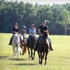 52% Off Trail Ride