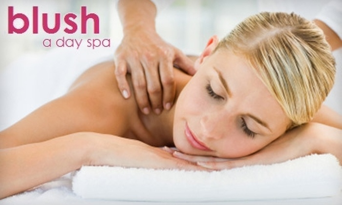 Blush a Day Spa - Sonoma: LED Light Therapy Facial with Optional Day Spa Package at blush a day spa in Sonoma. Choose Between Two Options.