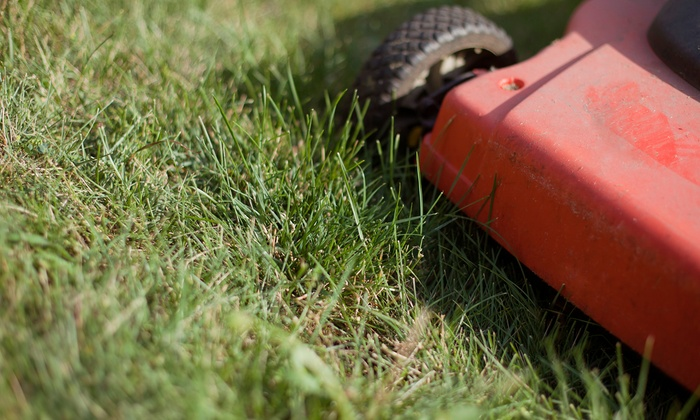 Q's Reliable Lawn Service, LLC - East Side: Lawn Mowing and Edging for a Quarter, Half, or Full Acre from Q's Reliable Lawn Service, LLC (Up to 52% Off)