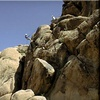 55% Off Rock-Climbing Tour for Two in Joshua Tree