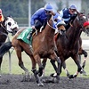 Up to 49% Off at Emerald Downs in Auburn