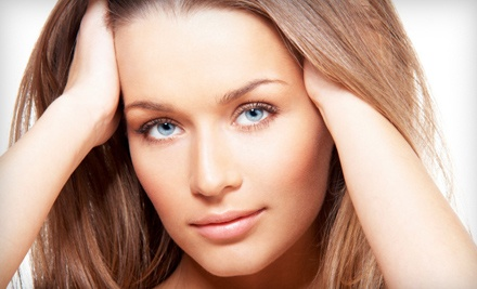Single-Visit Skincare Package (a $329 total value) - The International Skin Care Institute in Scottdale