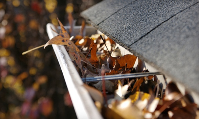 Gutter Medic - Hough: $49 for $100 Worth of Home or Commercial Gutter Cleaning or Repair from Gutter Medic