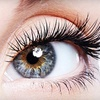 Up to 54% Eyelash Extensions at Luly Lash