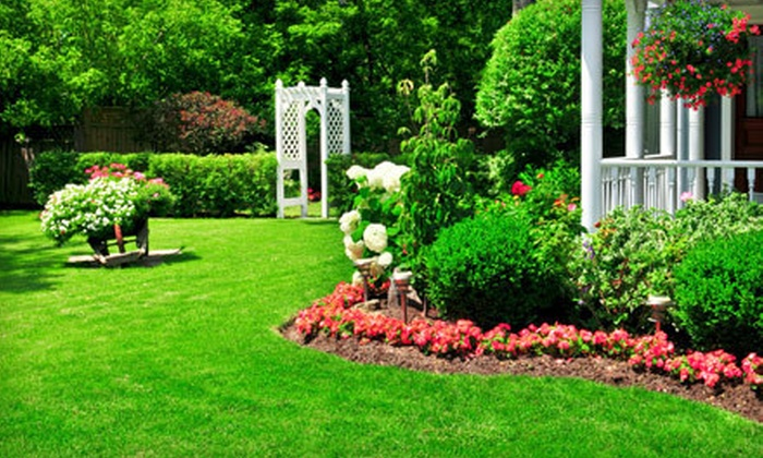 WonderGro, Inc. - Cleveland: $49 for Spring Lawn-Care Package for for Lawn of Up to 10,000 Square Feet from WonderGro, Inc. ($100 Value)