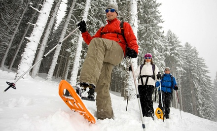 Snowshoeing or Intro to Ice Climbing for One or Two from Northeast Mountain Guiding (Up to 78% Off)