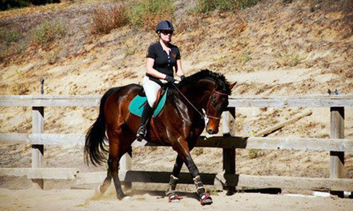 Camulos Farm - Oceanside-Escondido: One, Three, or Five 60-Minute Horseback-Riding Lessons at Camulos Farm (Up to 56% Off)