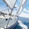Torre della Meloria: gita in barca