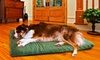 Orthopedic Pet Mattress 2-Pack in Suede or Terry: Orthopedic Pet Mattress 2-Pack in Suede or Terry
