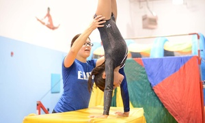 Elite Gymnastics West: Kids' Night Out Event for One, Two, or Three Children at Elite Gymnastics West (Up to 50% Off)