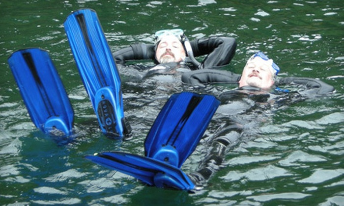 Rockfish Divers - Brentwood Bay: $32 for a Two-Hour Snorkelling Tour from Rockfish Divers in Brentwood Bay ($65 Value)