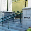 Bruce Museum – Up to 52% Off Membership